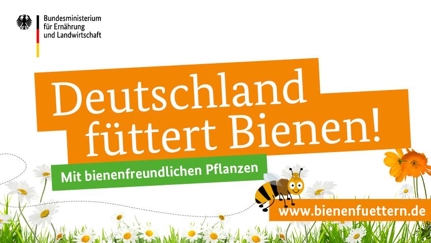 BMEL_Bienen_Sharepics_08_RZ1-Deutschland-fuettert